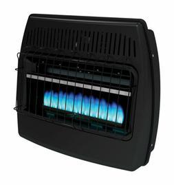 Dyna-Glo GBF30DTDG-2 30,000 BTU Blue Flame Vent Free Garage